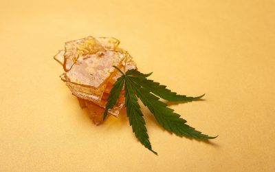 The Top 2021 Trends in Regulating Marijuana Concentrates & Compliance You Need To Know